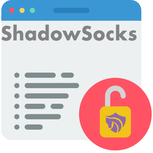 zebravpn images about shadowsocks concept