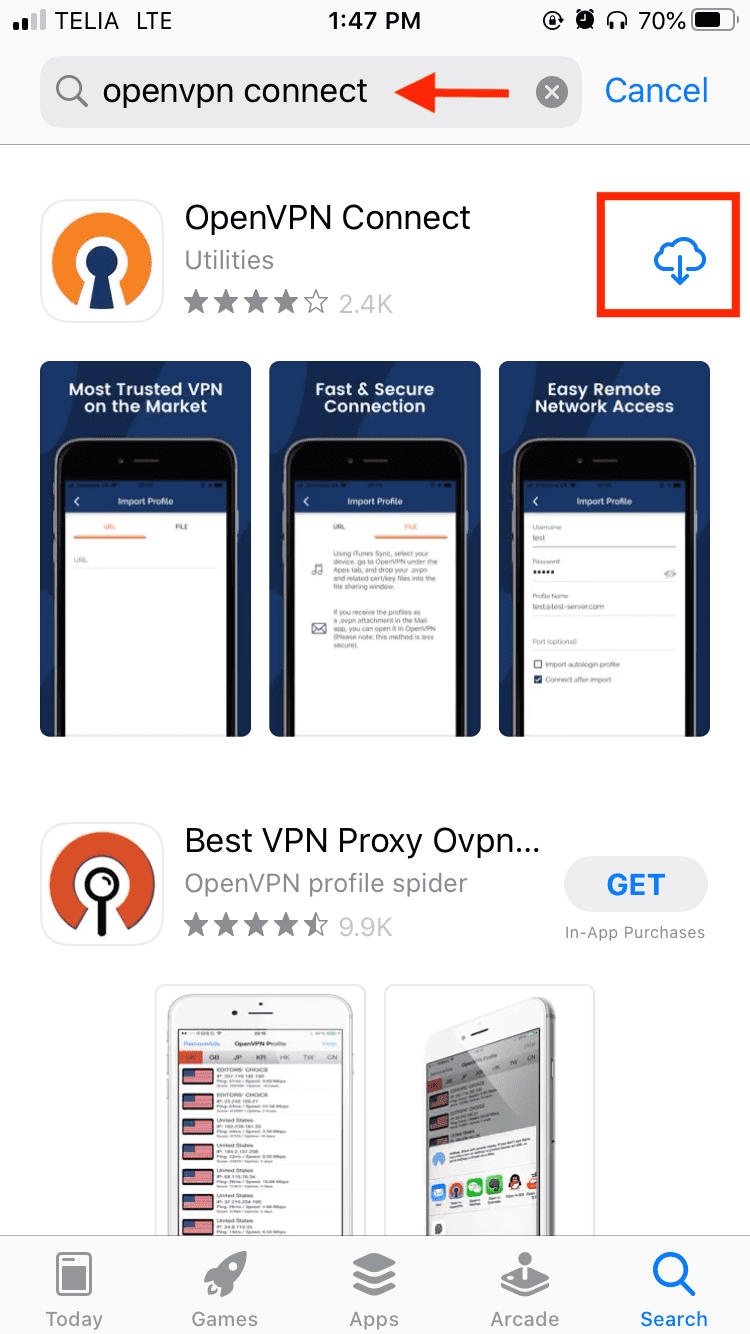 opevpn ios setup guide step 1